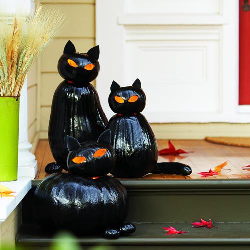 2014-10 halloween black cats